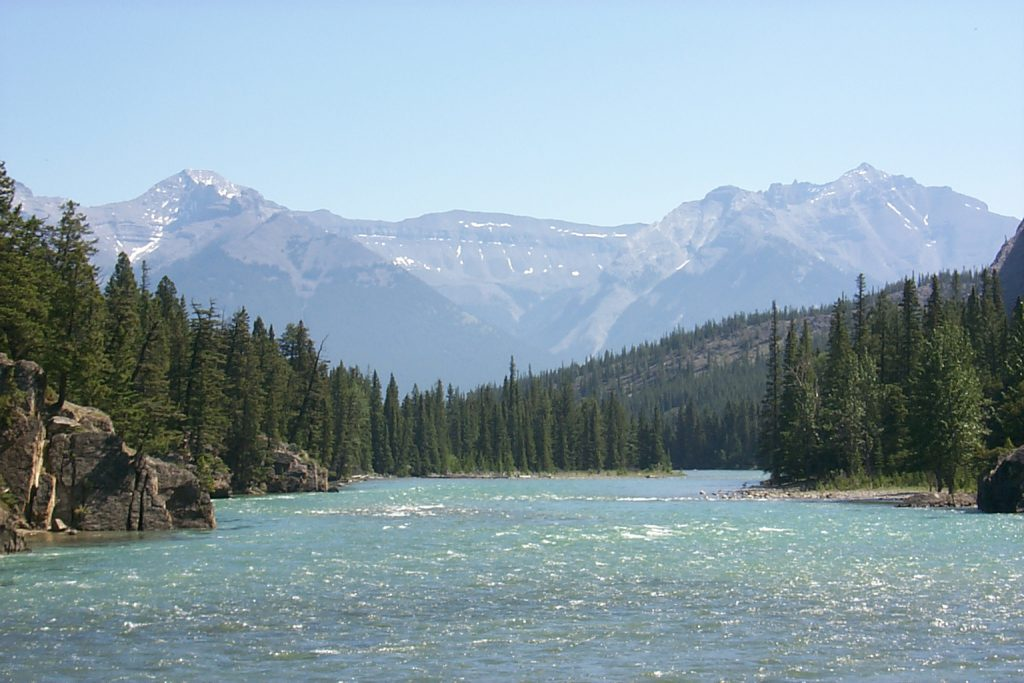 The Bow river after the falls.