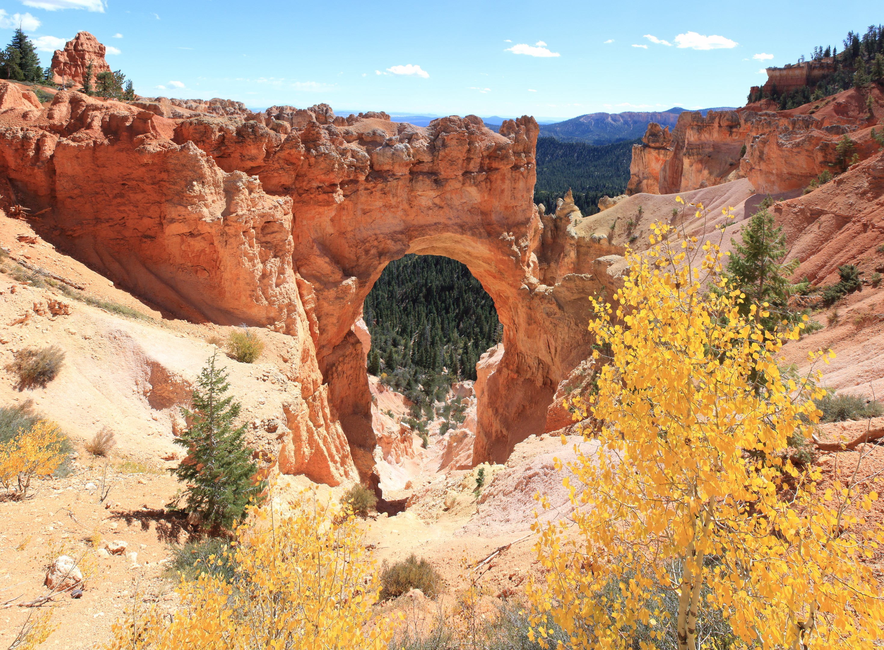 Bryce - Natural Bridge. Looks like an Arch, but technically it's not. Water flow carved this out.
