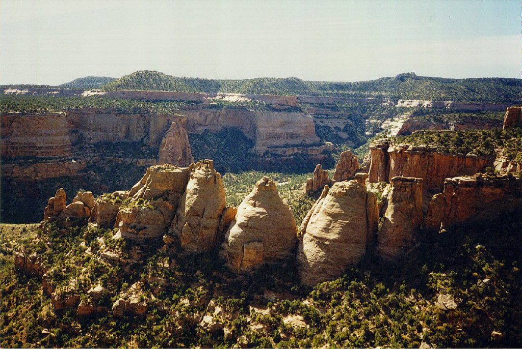 Here (Coke Ovens), two canyons have nearly merged. The remaining dividing wall has been eroded into 'oven' shaped domes.