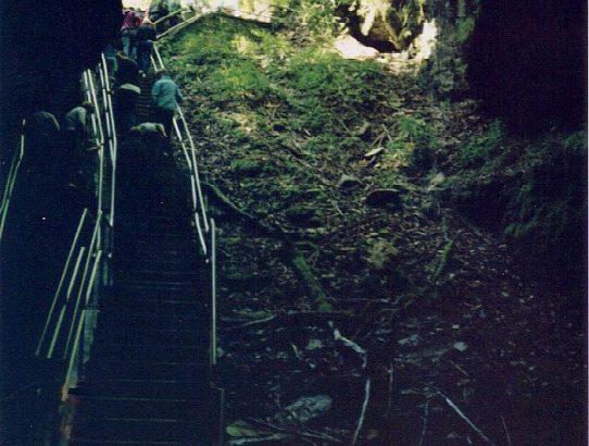 Mammoth Cave 1992