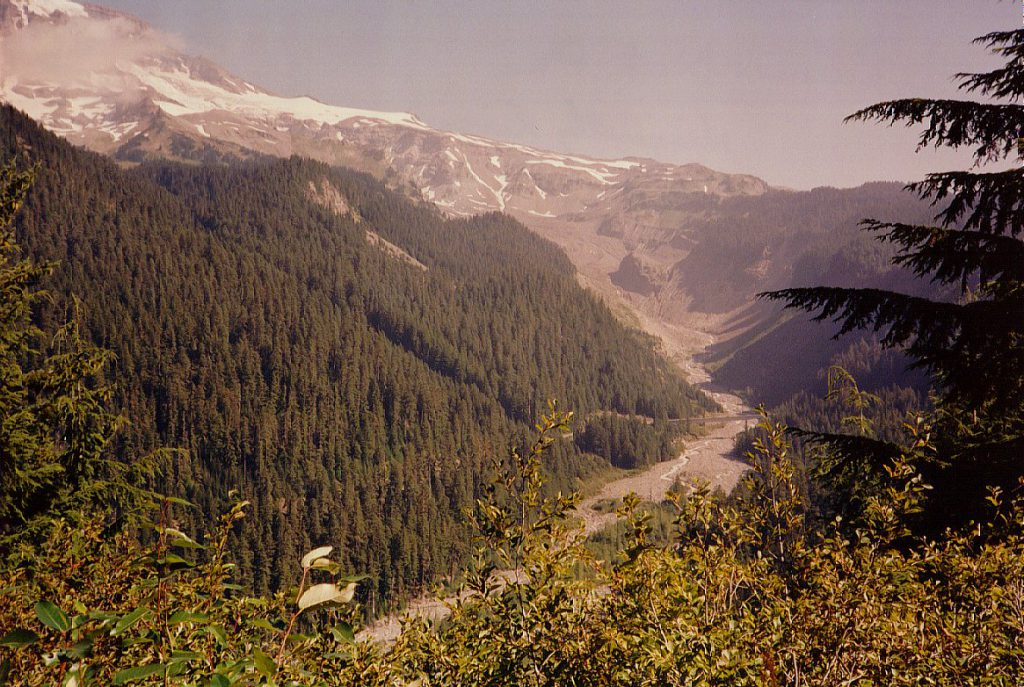This photo shows the Nisqually river from below looking up to Rainier on the top left. You can see the snake of the river in the flat of the valley. The moraine is hidden behind the hills centre as the river curves to the left to meet the Nisqually glacier on the site of the mountain.