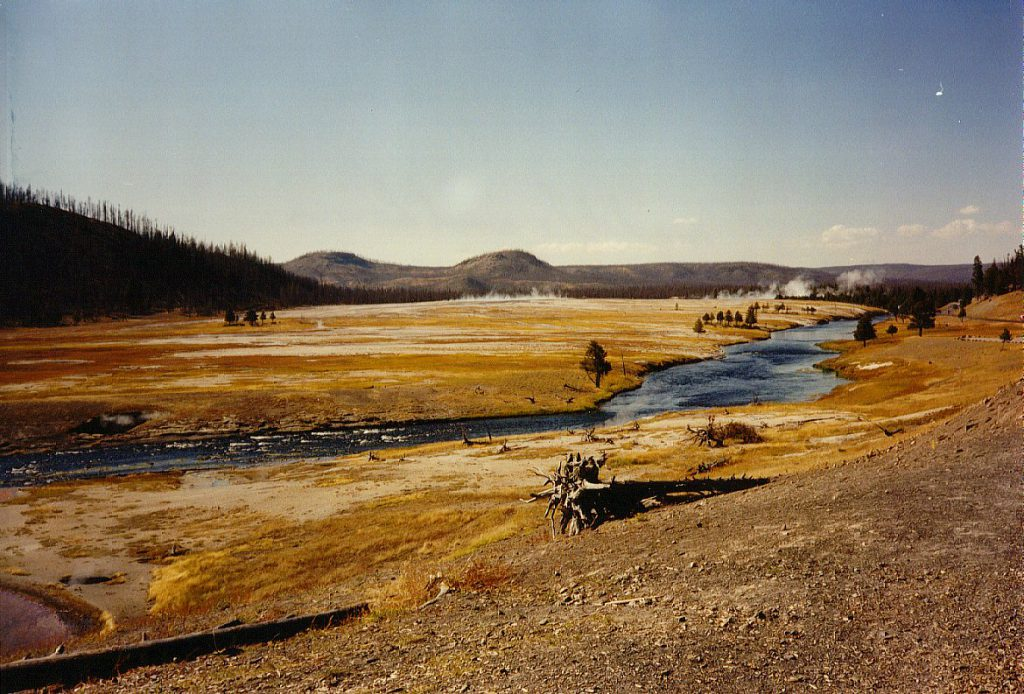 A view of the lower Geyser Basin in the distance across the river.